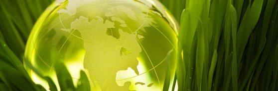 Header-Earth-Day-1.5.2.4_img1